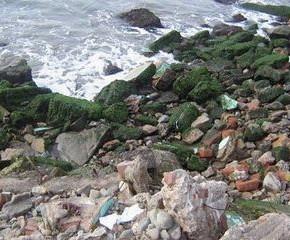 El 80% de los residuos del mar fueron tirados por el hombre