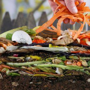 ¿Por qué es importante realizar composts?
