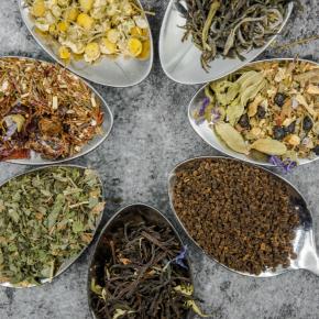 Comenzó el otoño, momento ideal para un buen té, pero ¿negro o verde?