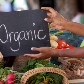 8 cosas que debes saber sobre los alimentos orgánicos