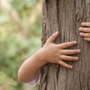 ¿Qué es la Educación Ambiental?